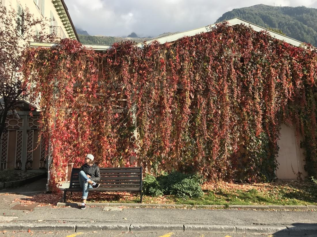 Autumn in Chamonix