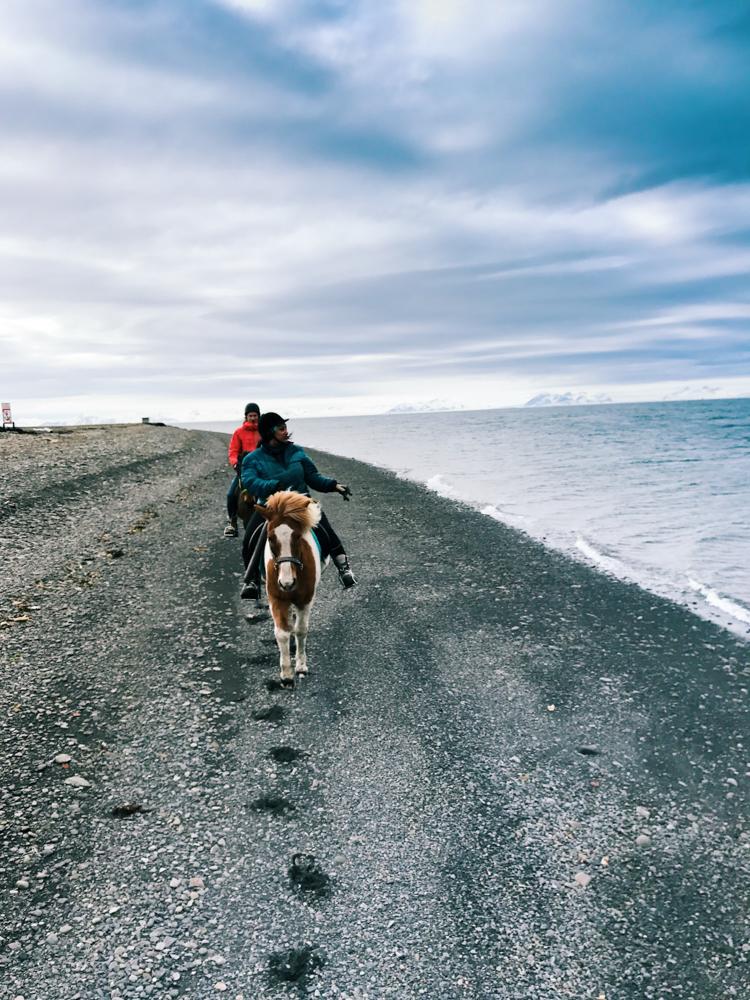 Svalbard_Pukka_Longyearbyen_resized-.jpg