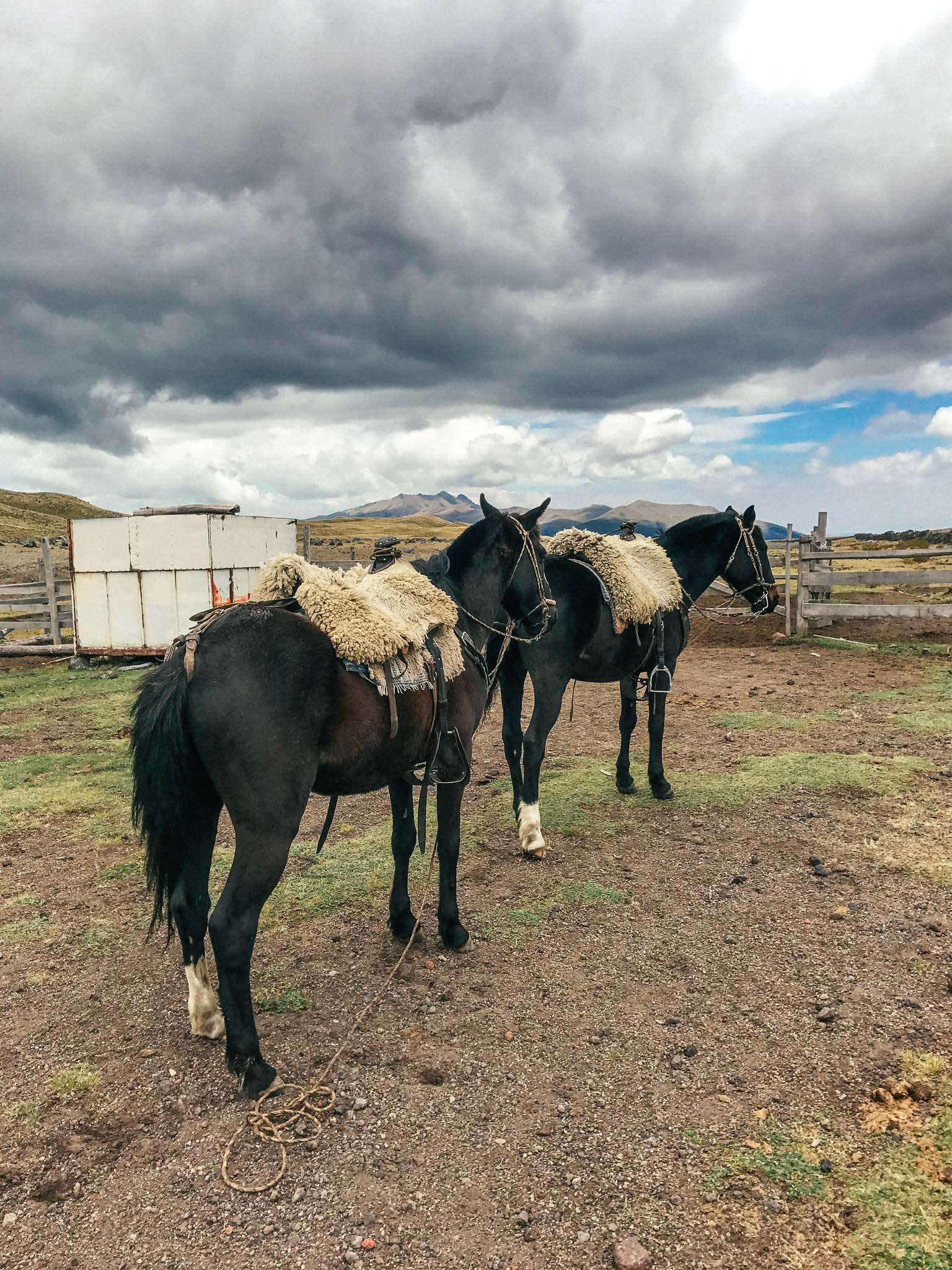 Ecuador_Horseriding-9405.jpg