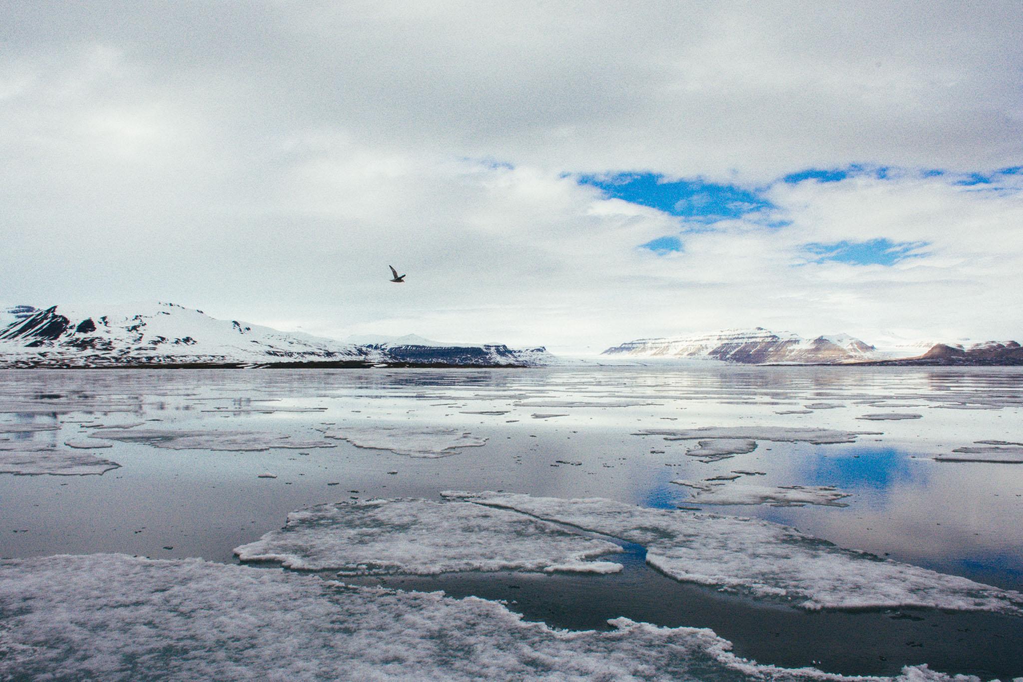 Svalbard_2018_Pukka_Perri_Rothenberg-48.jpg