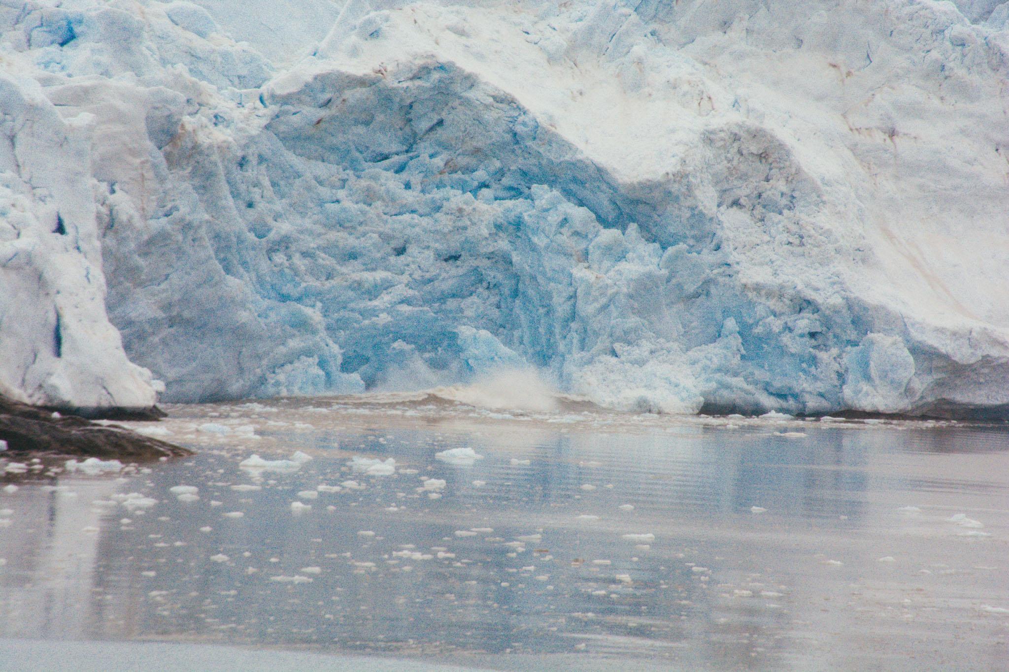Svalbard_2018_Pukka_Perri_Rothenberg-120.jpg