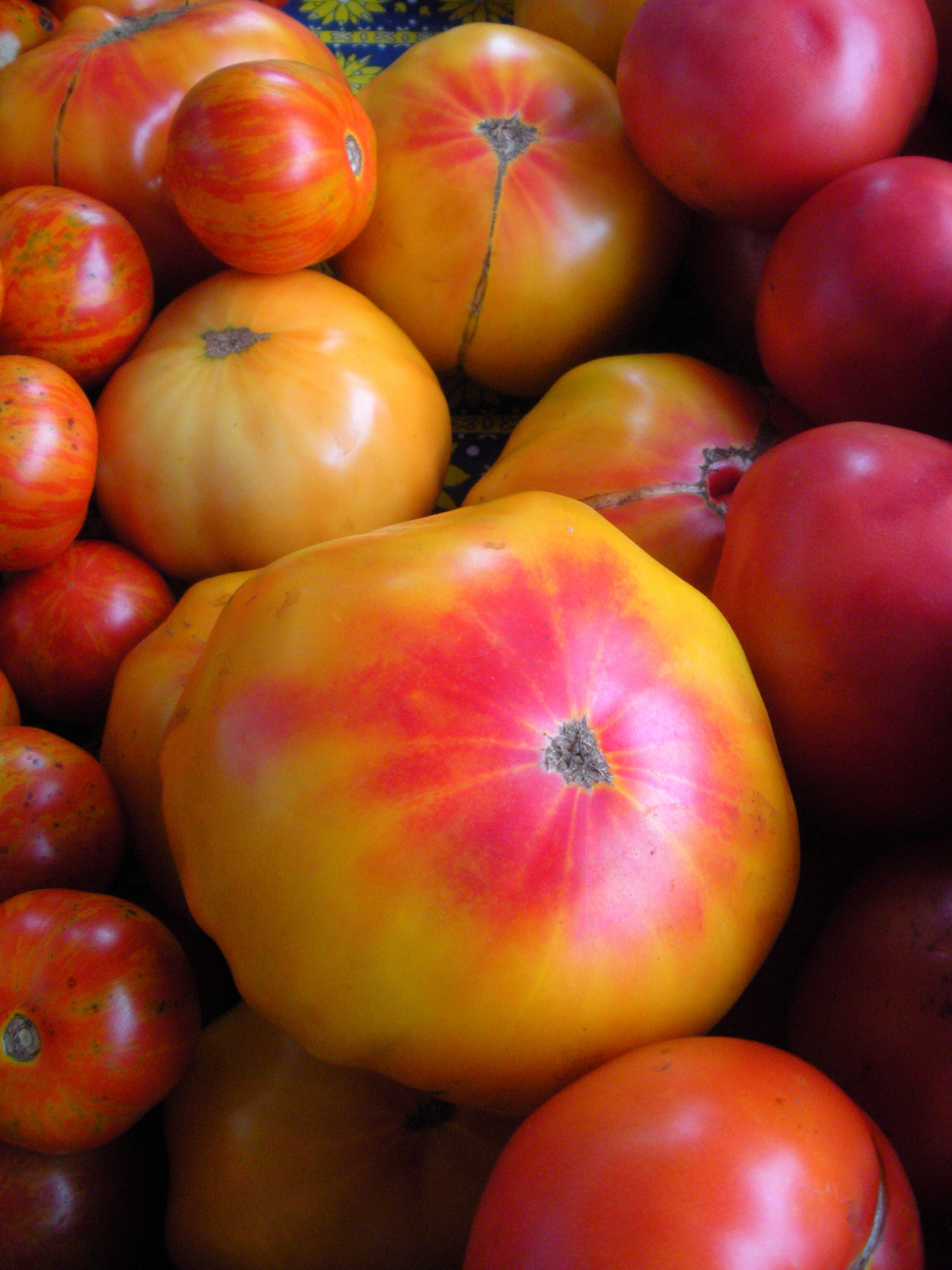 Heirlooms at the market ~ Riverbank Farm - August 2008 (A.Gross)