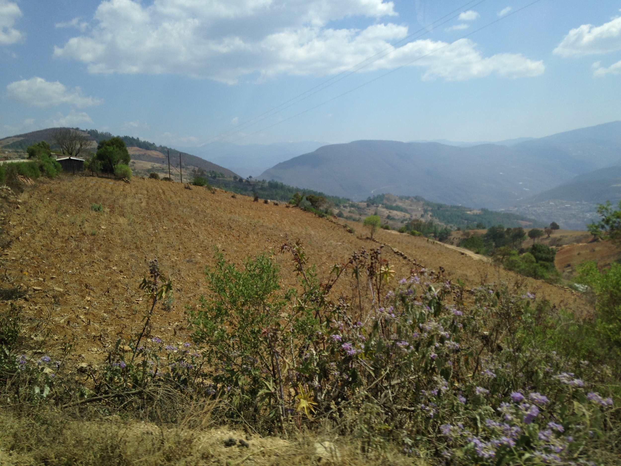 Draft animal-powered farm fields on the hillsides of Santa Ana Yareni