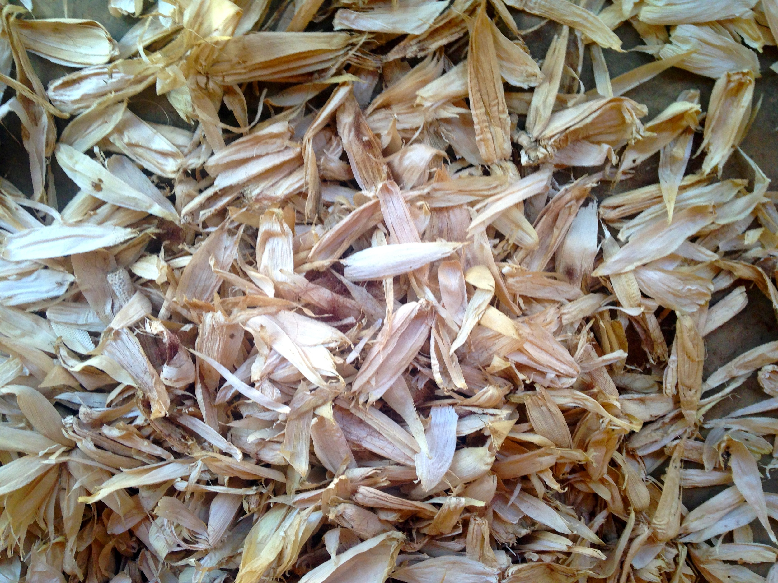 Corn husks, used for tamales, animal feed and a fuel source