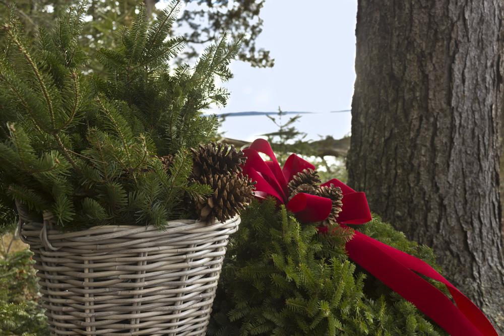Wreath_Shoot_24.jpg