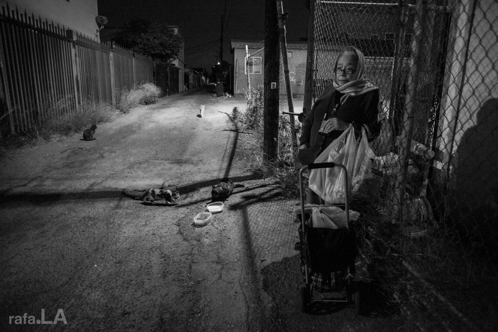 Alley Cat Lady.  November 19, 2013 - Boyle Heights