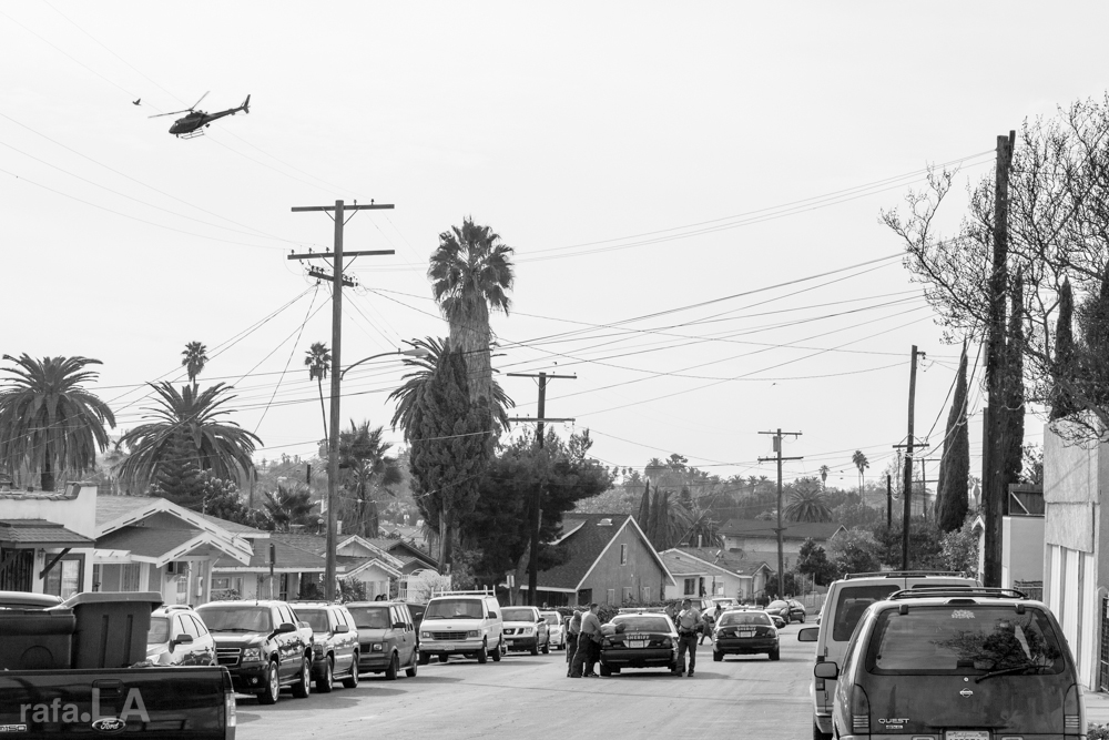 Run, run, run from the ghetto bird...  December 08, 2013 - Floral Avenue, East Los Angeles