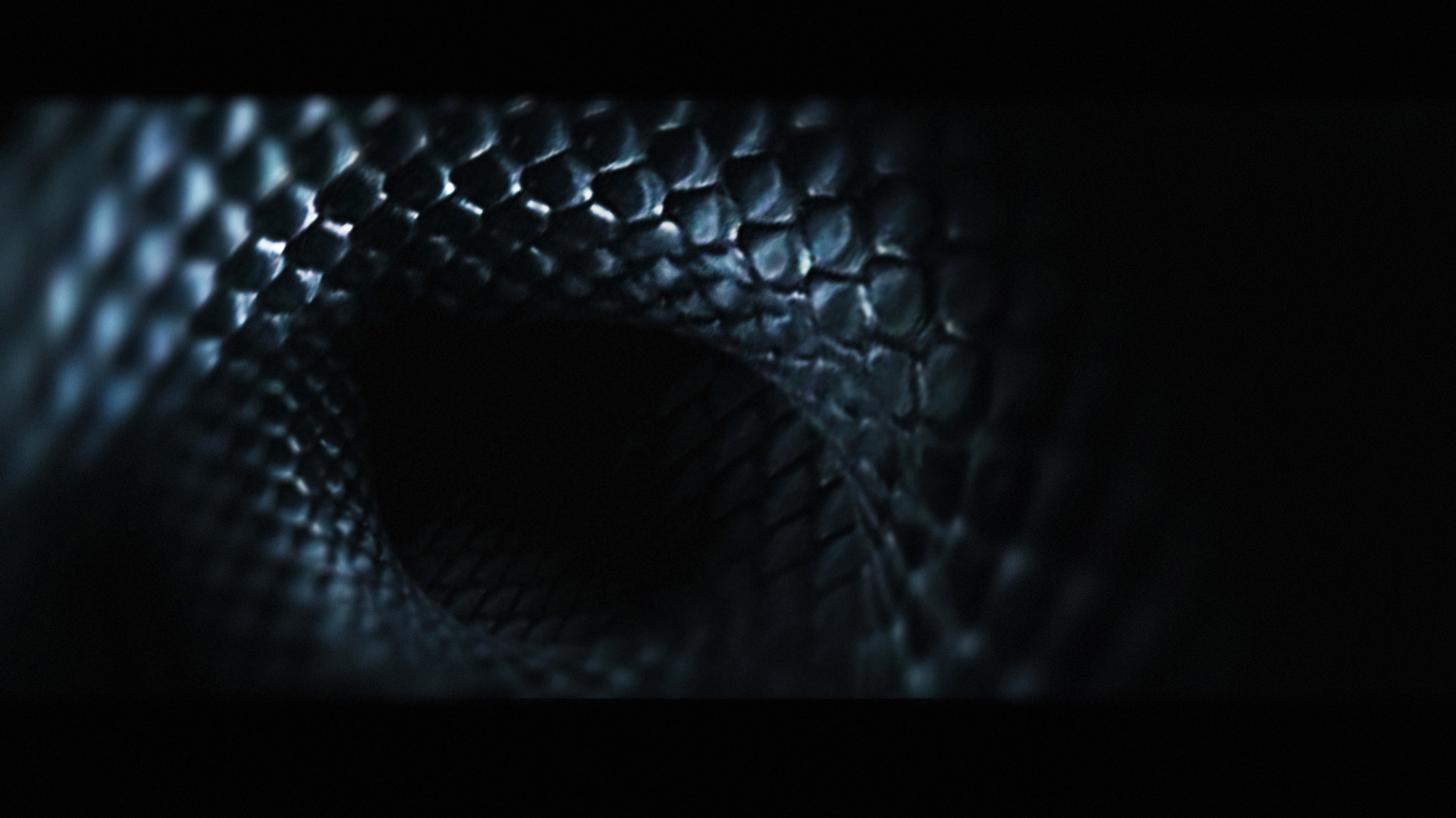 Lauren-Indovina-Penny-Dreadful-Titles-PSYOP-Concept-Art-Snake-2.jpg