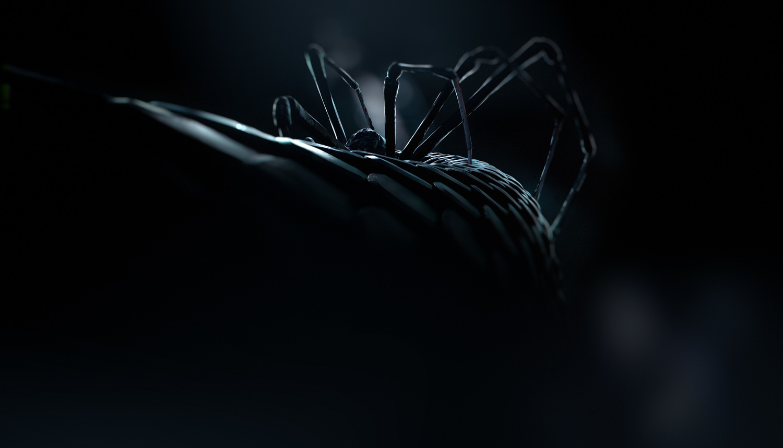 Lauren-Indovina-Penny-Dreadful-Packaging-PSYOP-Snake-and-Spider-1.jpg