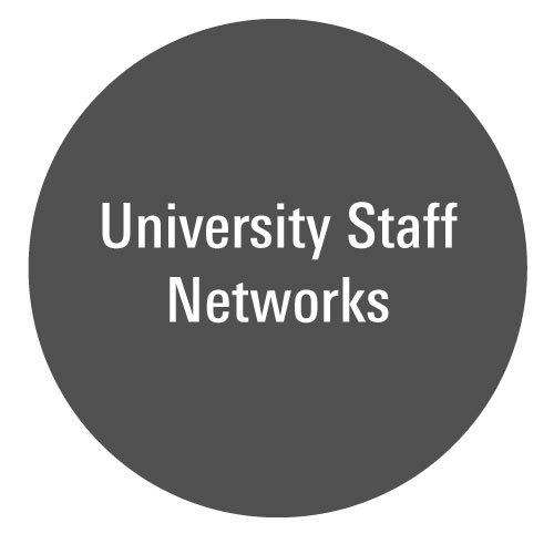 USSRW_Ball_STAFF_Networks.jpg