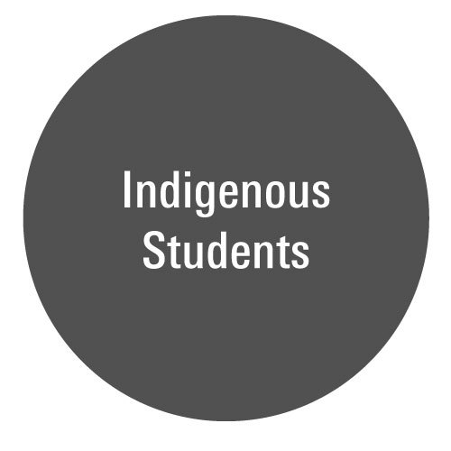 USSRW_Ball_SPSTUD_Indigenous.jpg