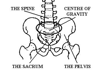 center of gravity.png