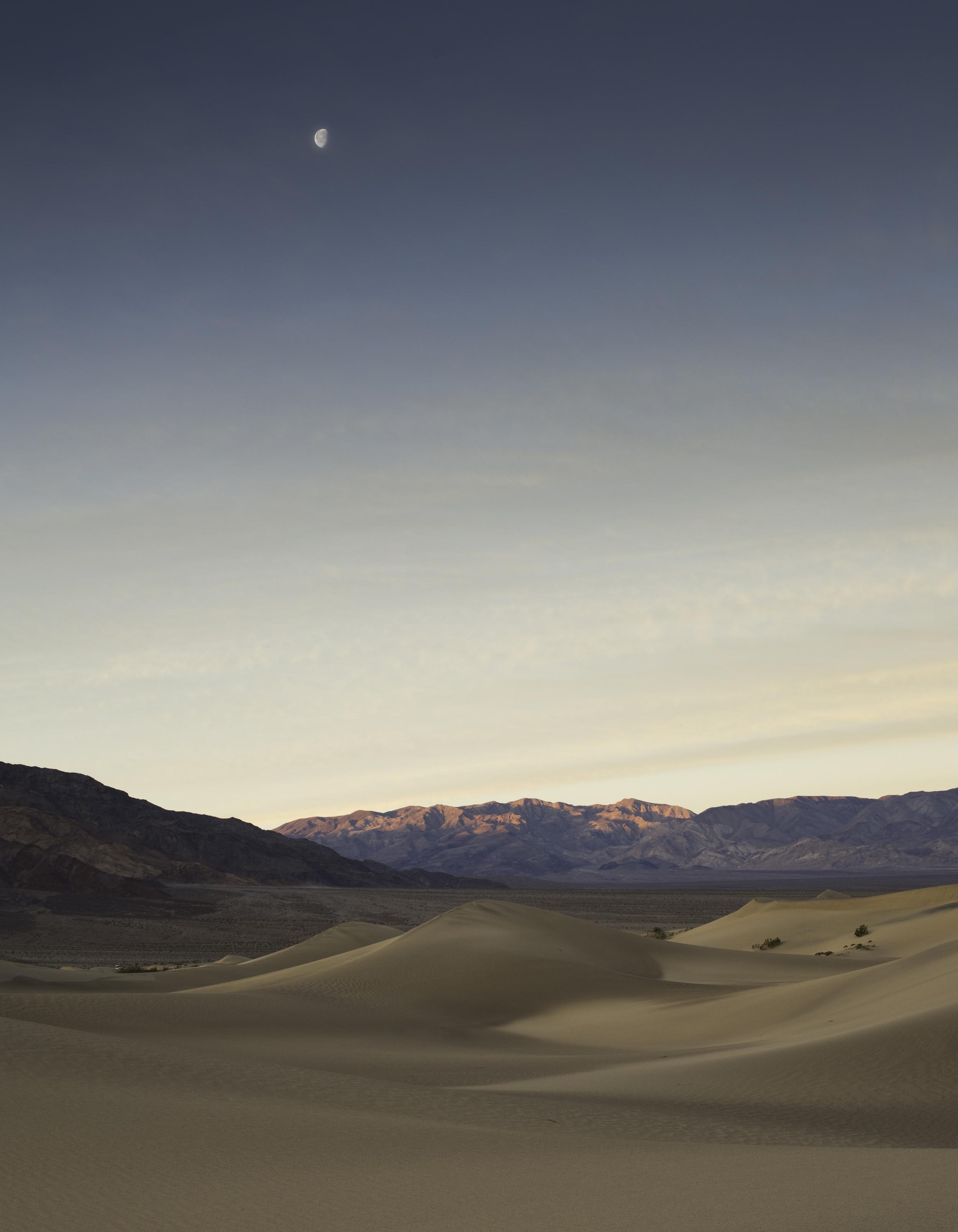 Mesquite Moonrise.jpg