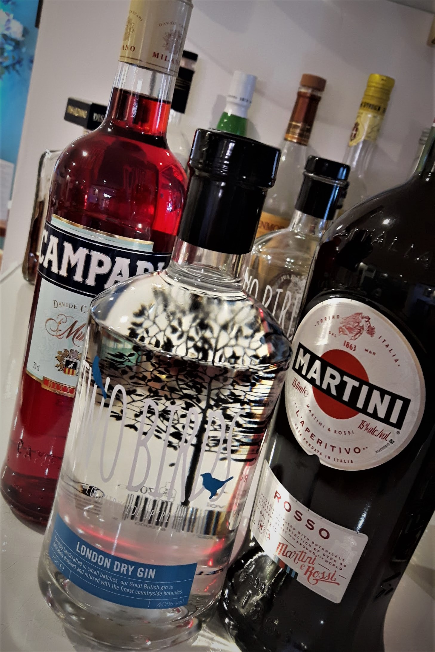 Negroni Ingredients