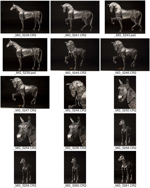 Horse ContactSheet-001.jpg