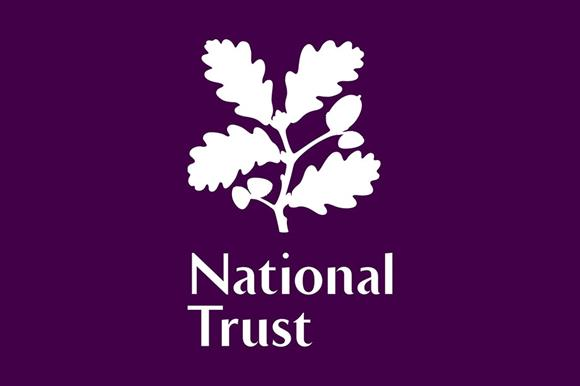 NT-logo-02-20180327120653929.jpg