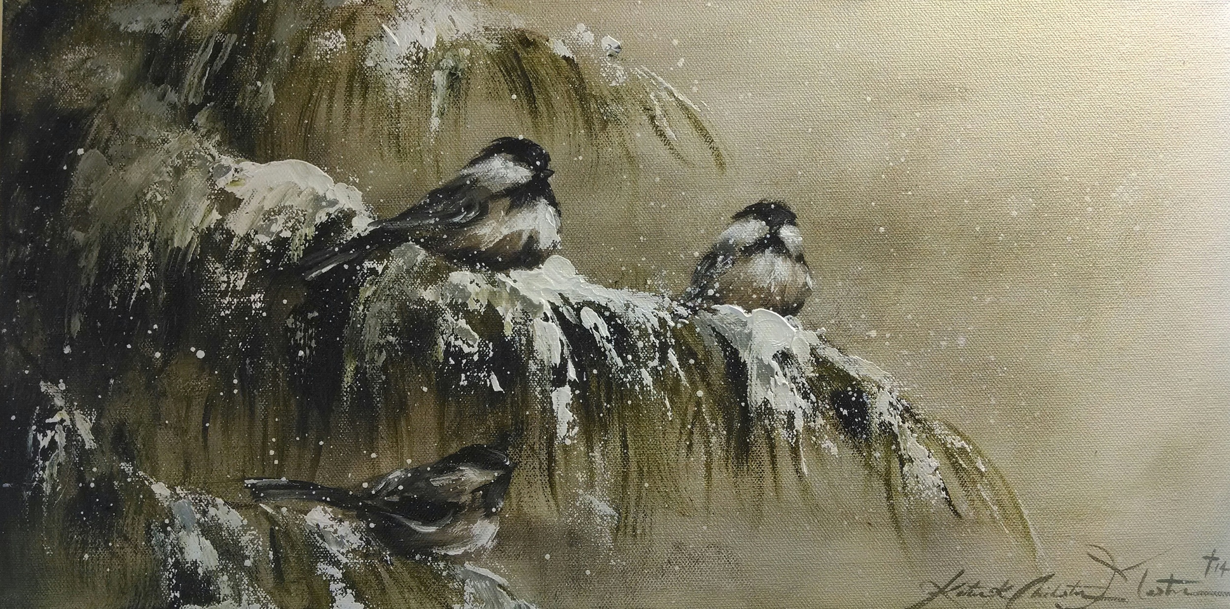 Chickadees on Pine