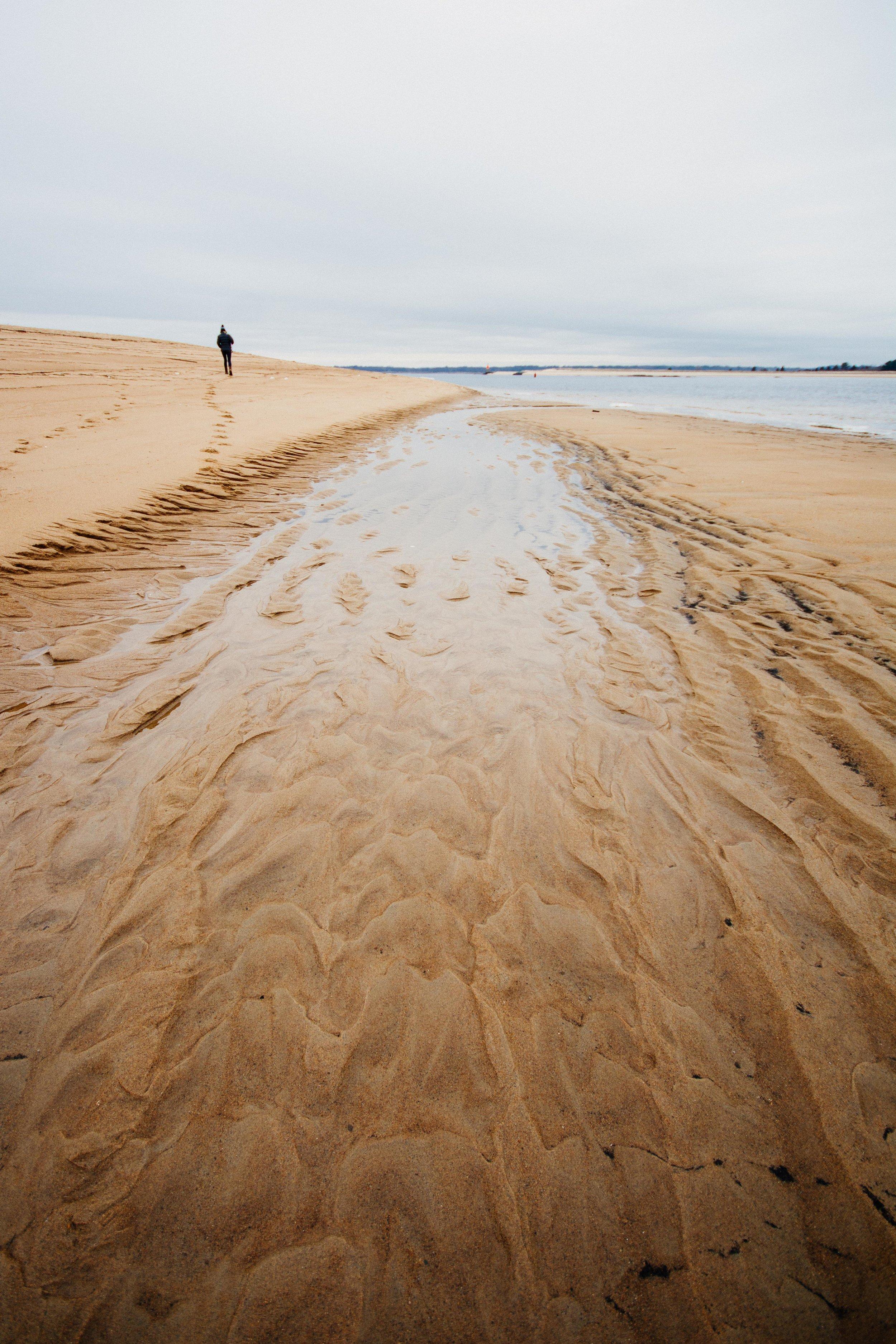 Plum Island tide marks