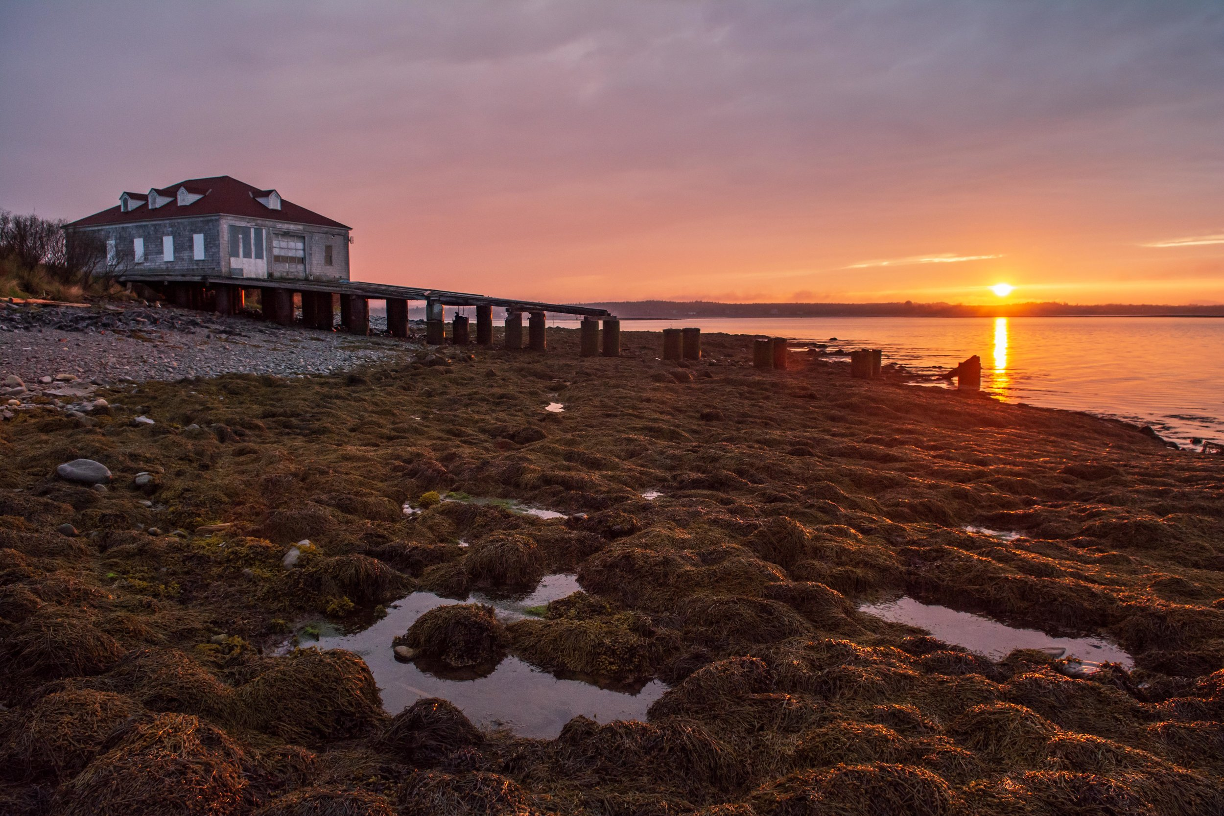 The sun sets at the West Quoddy Lifesaving Station, a former Coast Guard operation that served as the base of the Helmuth Lab for the first half of the trip.