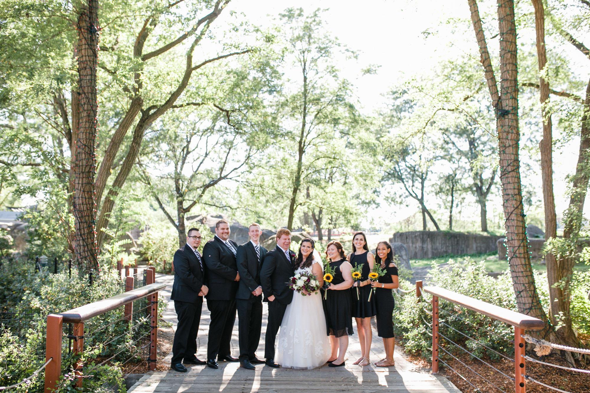 toledo-zoo-wedding-pictures-40.jpg