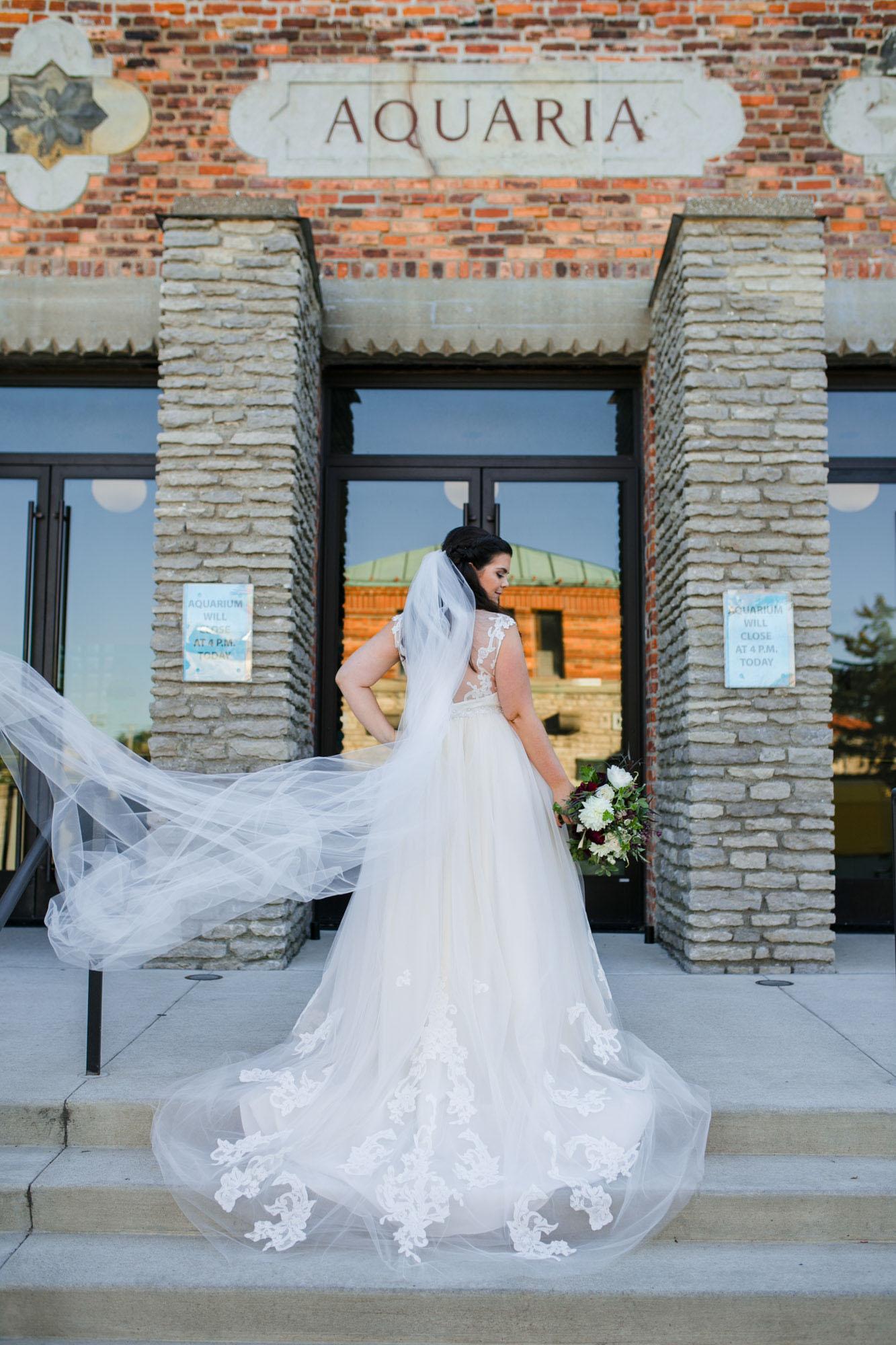 toledo-zoo-wedding-pictures-44.jpg