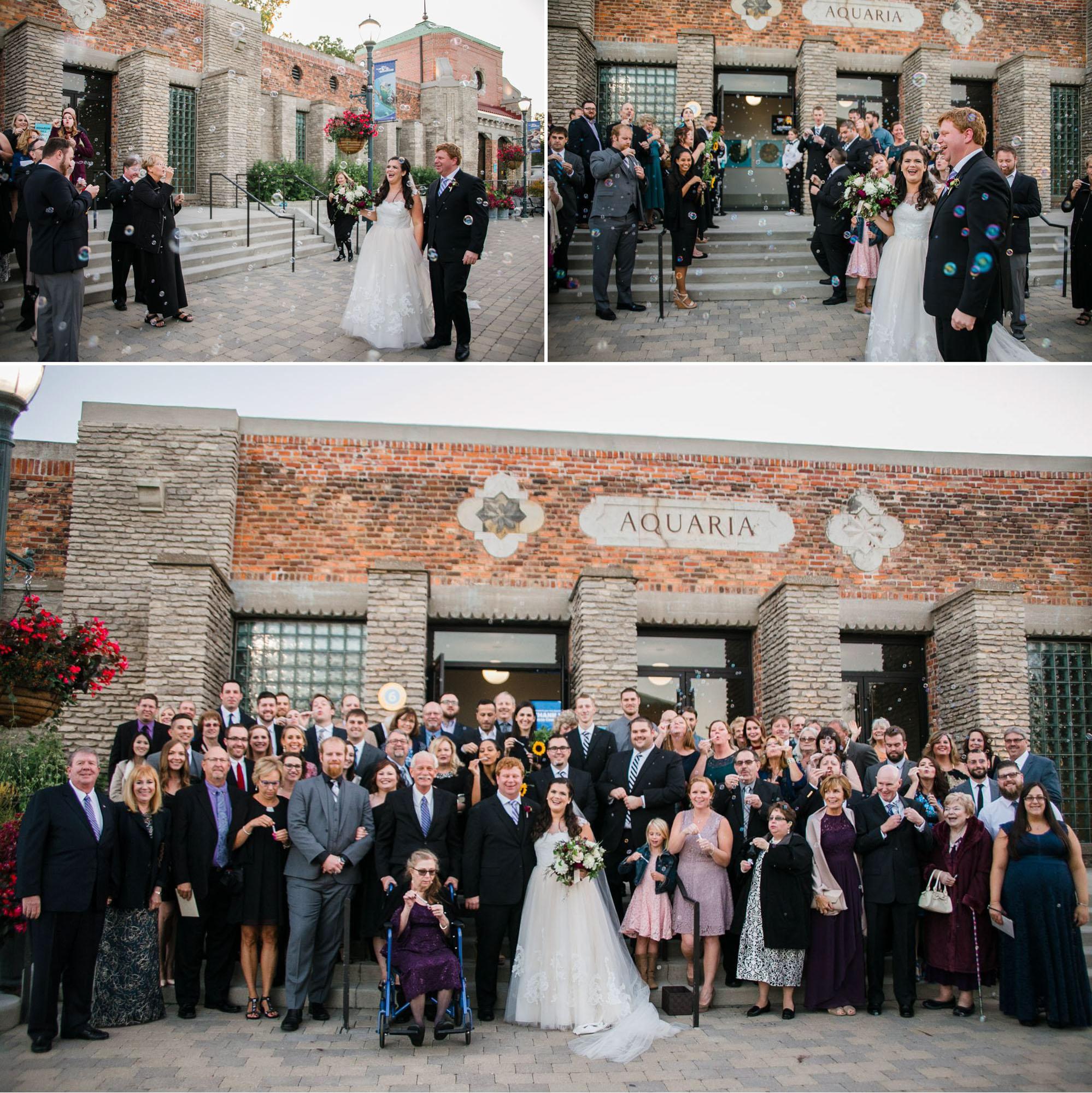 toledo-zoo-wedding-pictures-150.jpg