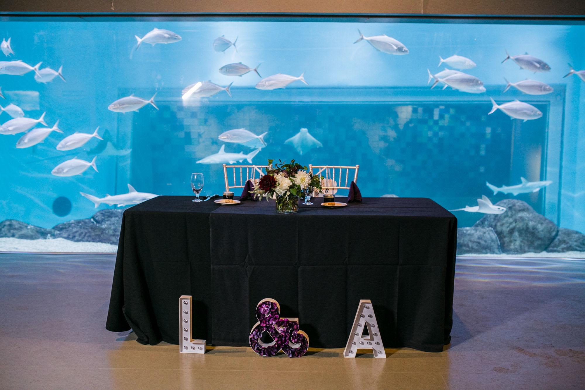 toledo-zoo-wedding-pictures-66.jpg