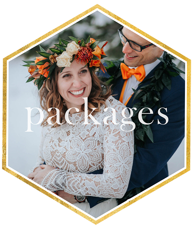 wedding-photographers-toledo-ohio-wedding-photographers-packages.png