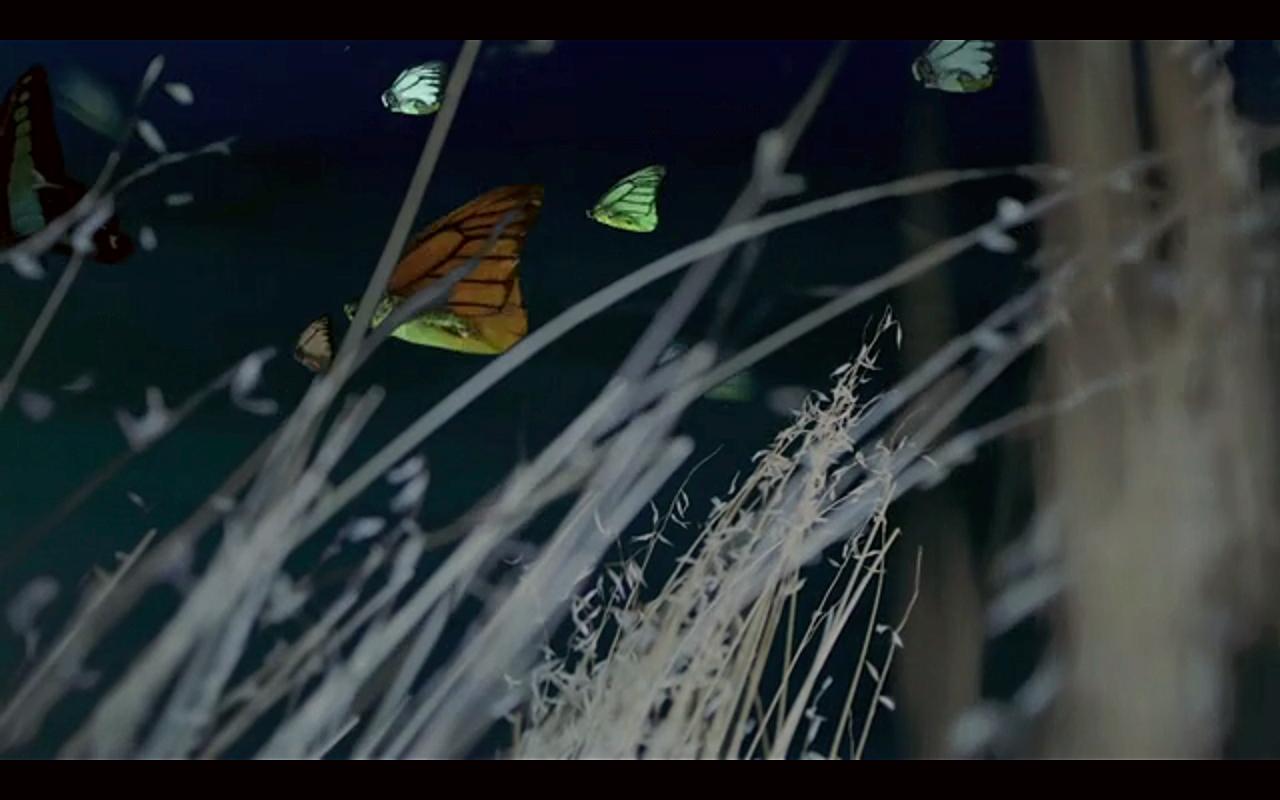 Screen Shot 2014-09-27 at 12.48.35 PM.png