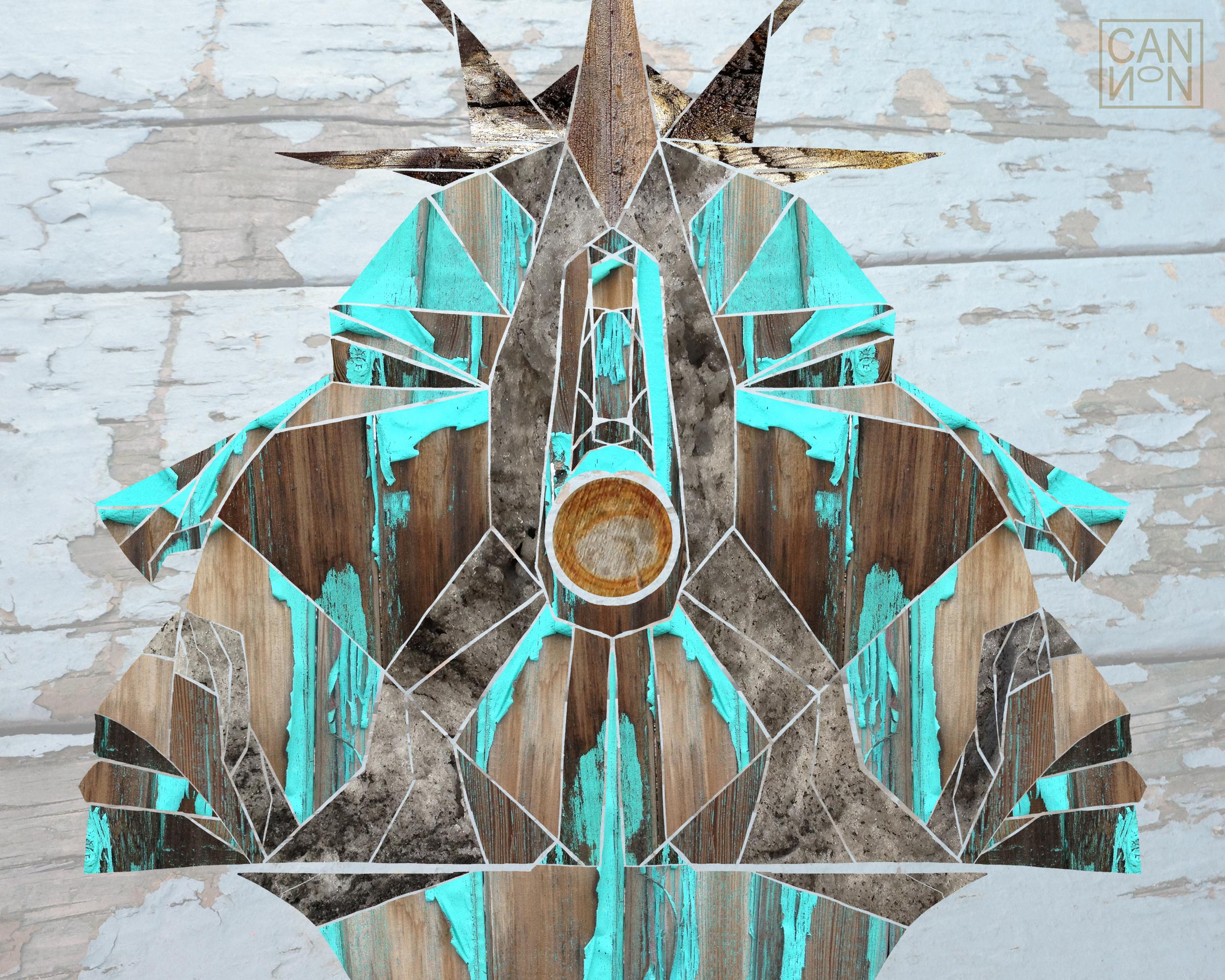 Crown of Thorns 8x10.jpg