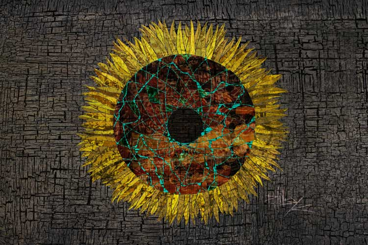 Sunflower_Web.jpg