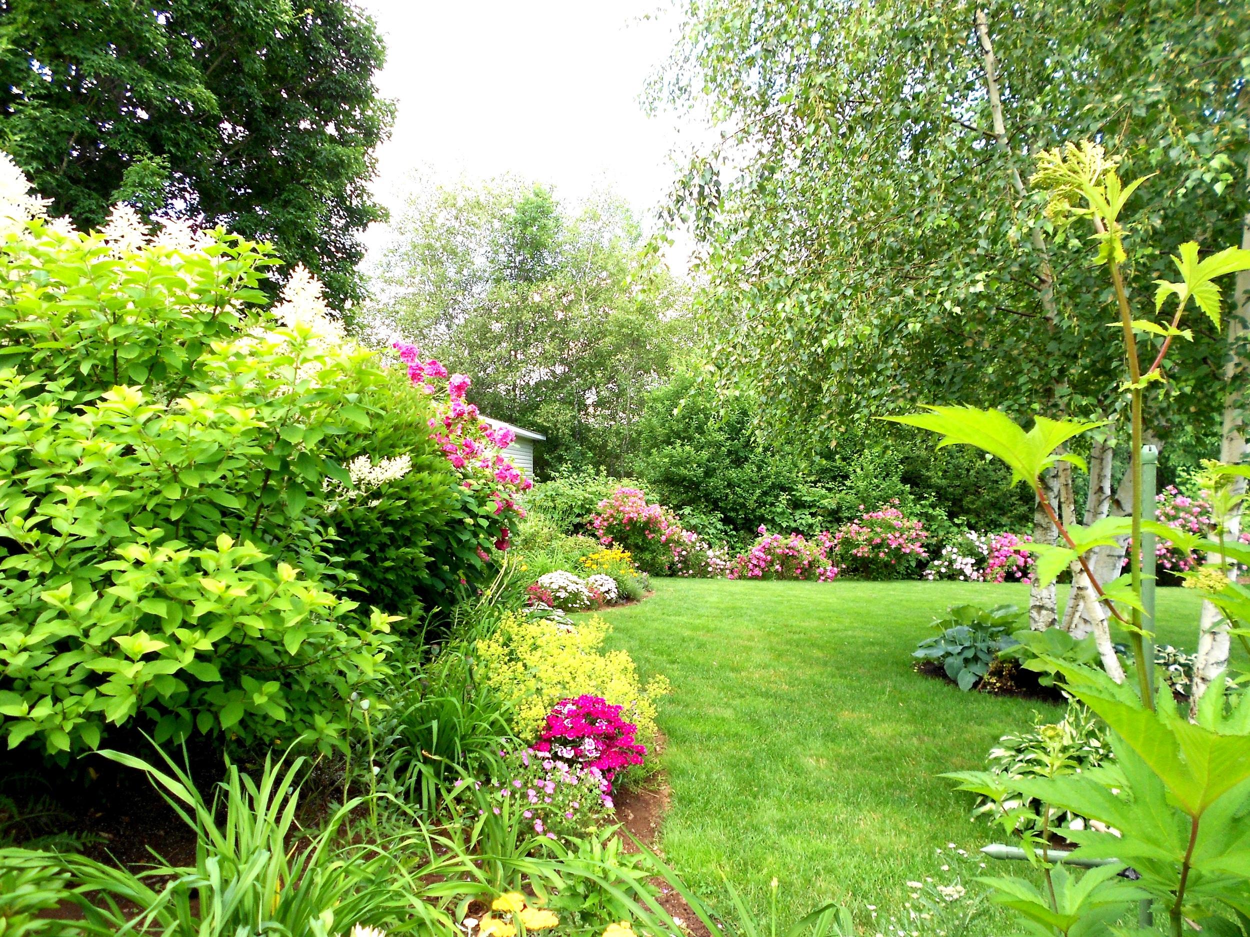 Landscape & lawn photo for website  (2).jpg