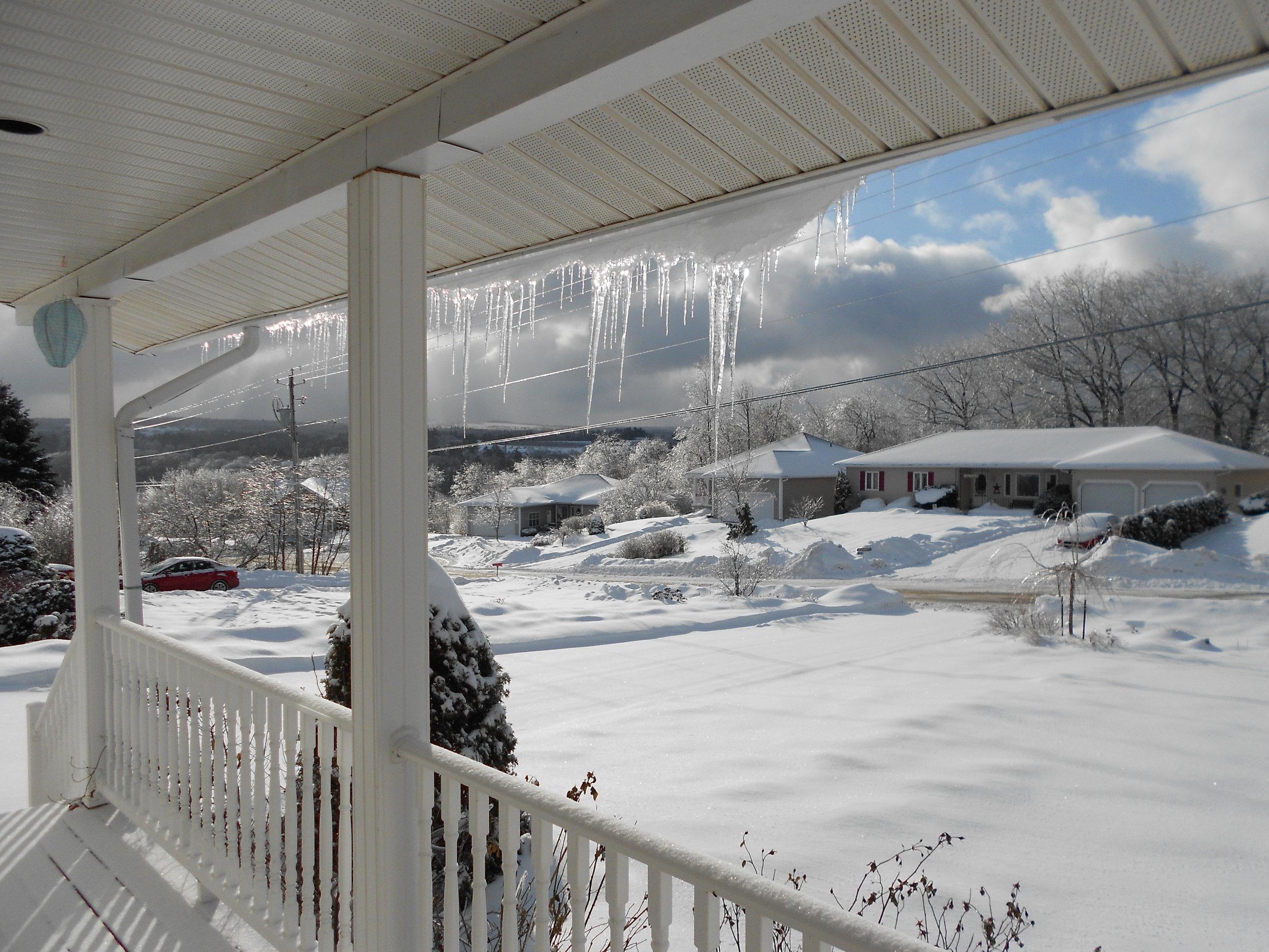 Snow Scene for LLC Website.jpg