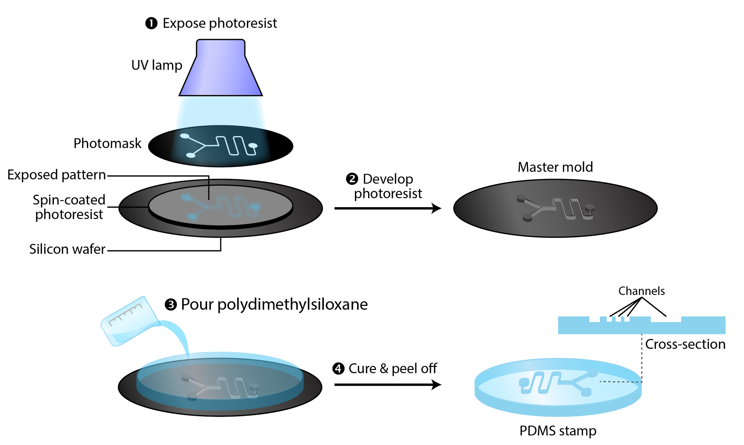 The process of photolithography to make a microfluidic device