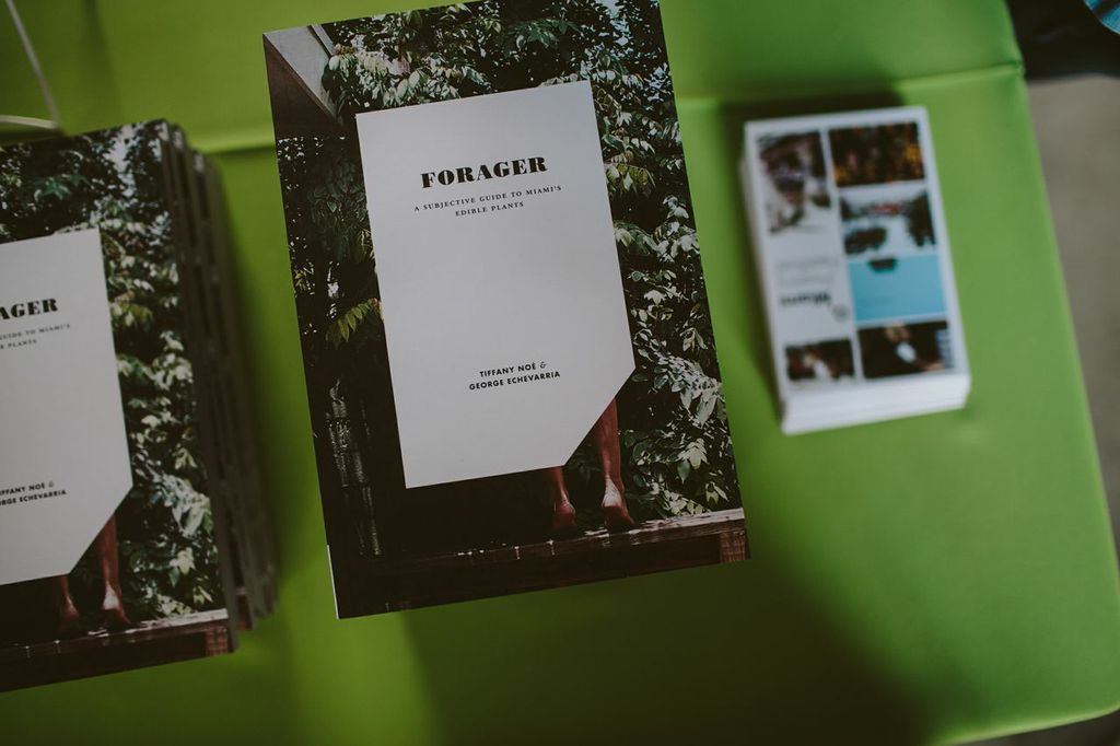 FORAGER: A Subjective Guide to Miami's Edible Plants  (Jai-Alai Books, 2014). All photos courtesy of Gesi Schilling.