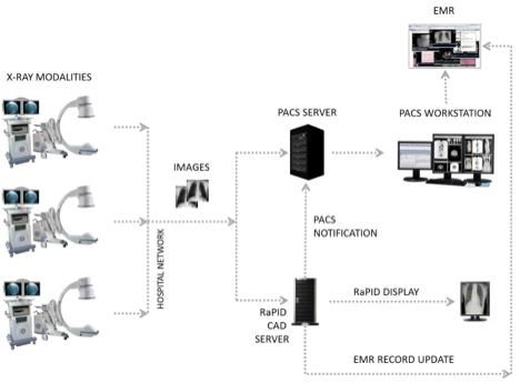 RaPID_CAD_Server.png