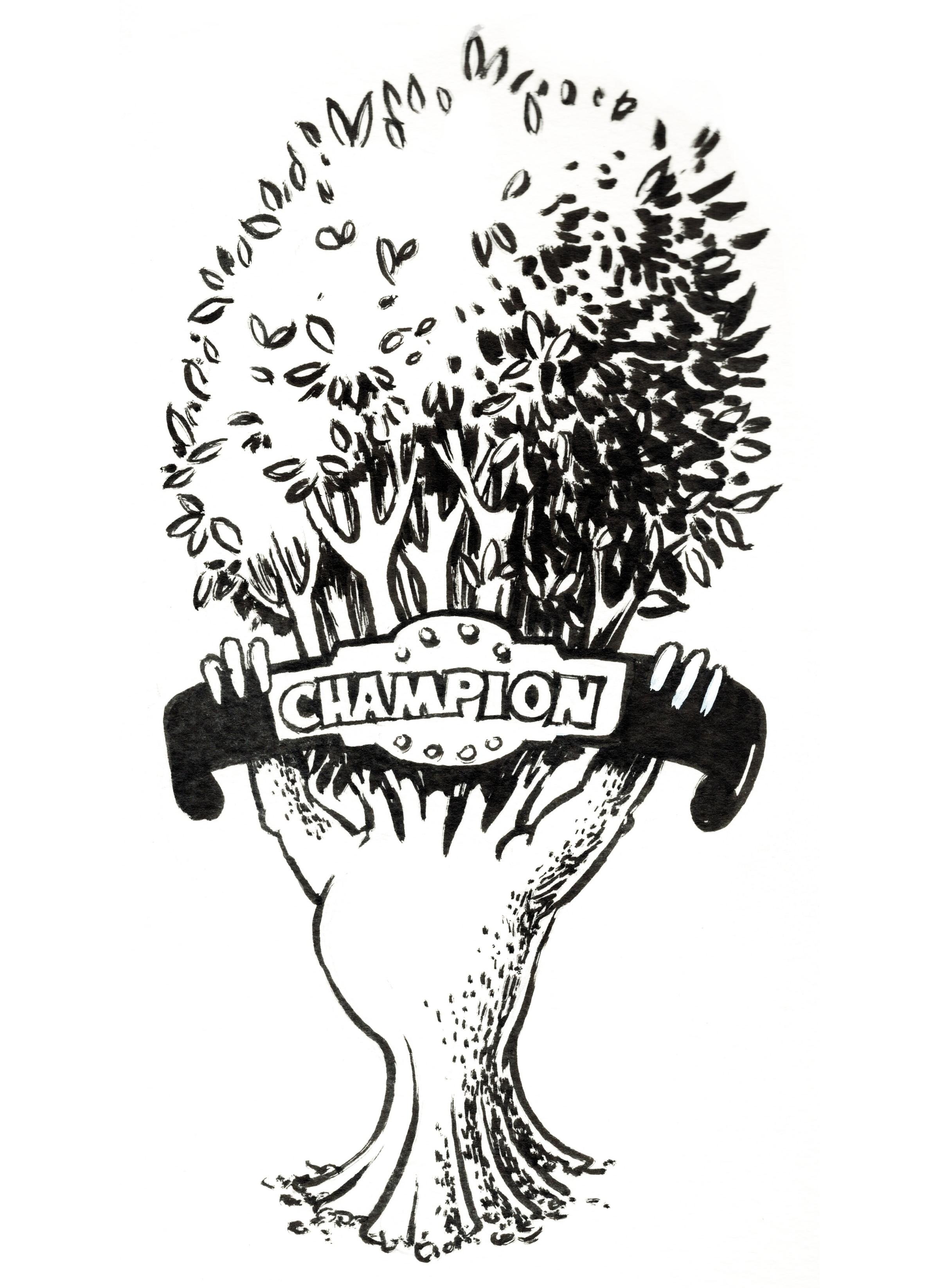 TreeIllustration.jpg