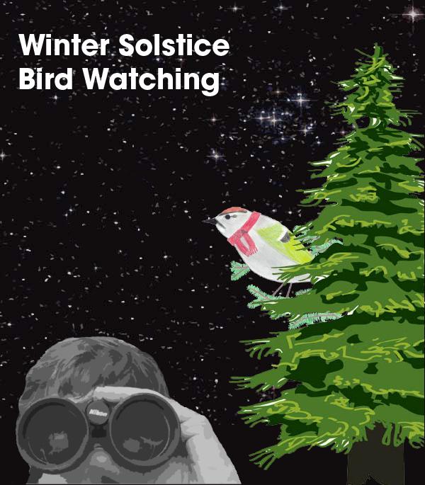 Solstice_Flyer-NO-DATE.png