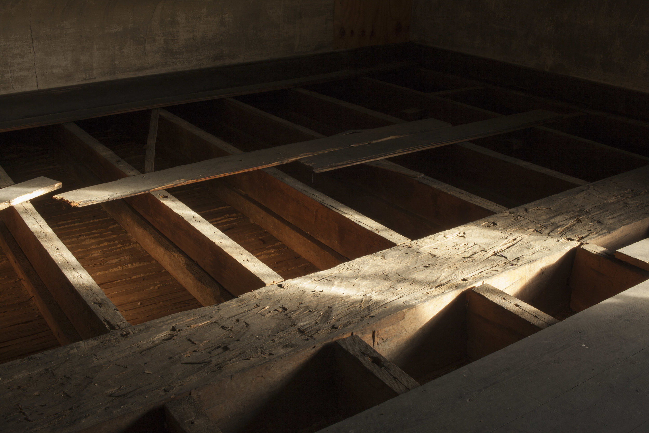 The seed packets were discovered between joists in the attic floor. Photo: Starr Herr-Cardillo