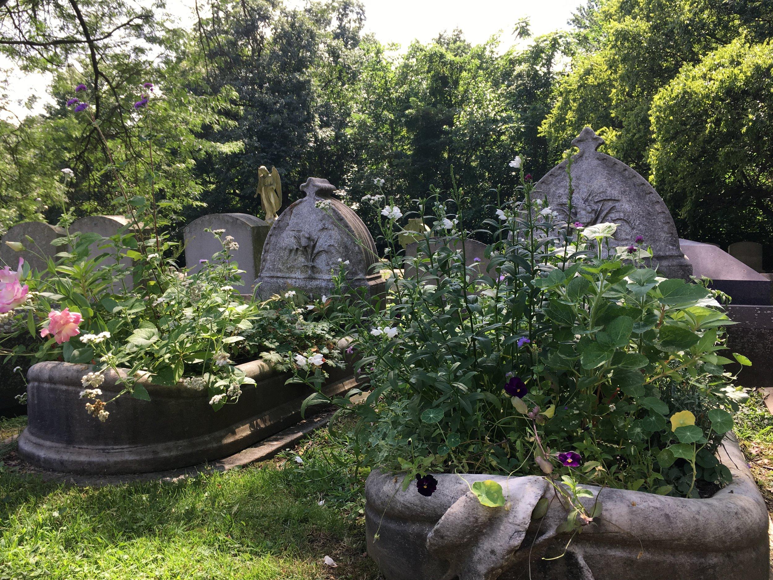 Grave Gardens in the Haseltine Family Plot.