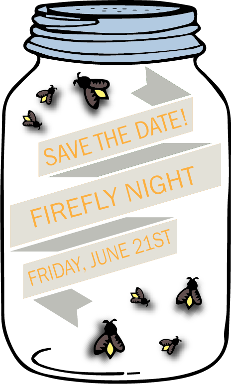FIREFLY_NIGHT_STD-2019.png
