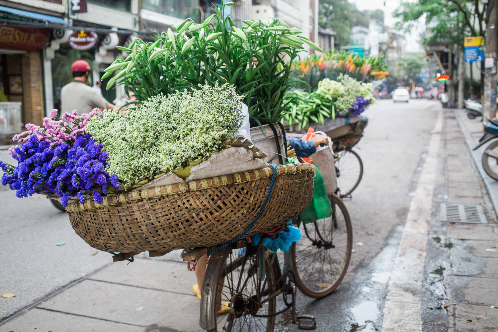 vietnamsethalwinphotoworks-11.jpg