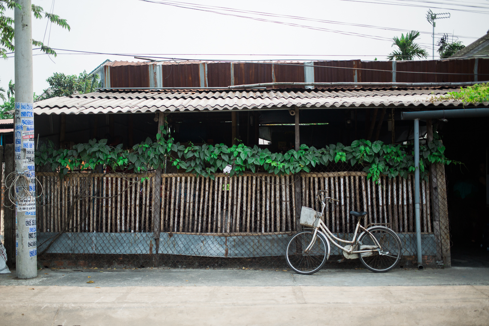 vietnamsethalwinphotoworks-90.jpg