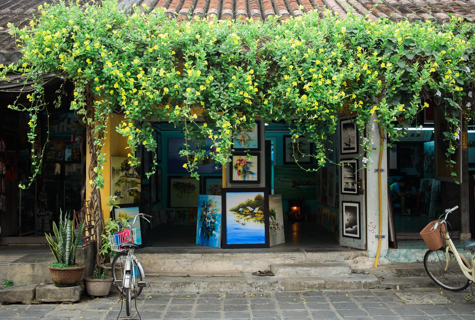 vietnamsethalwinphotoworks-95.jpg