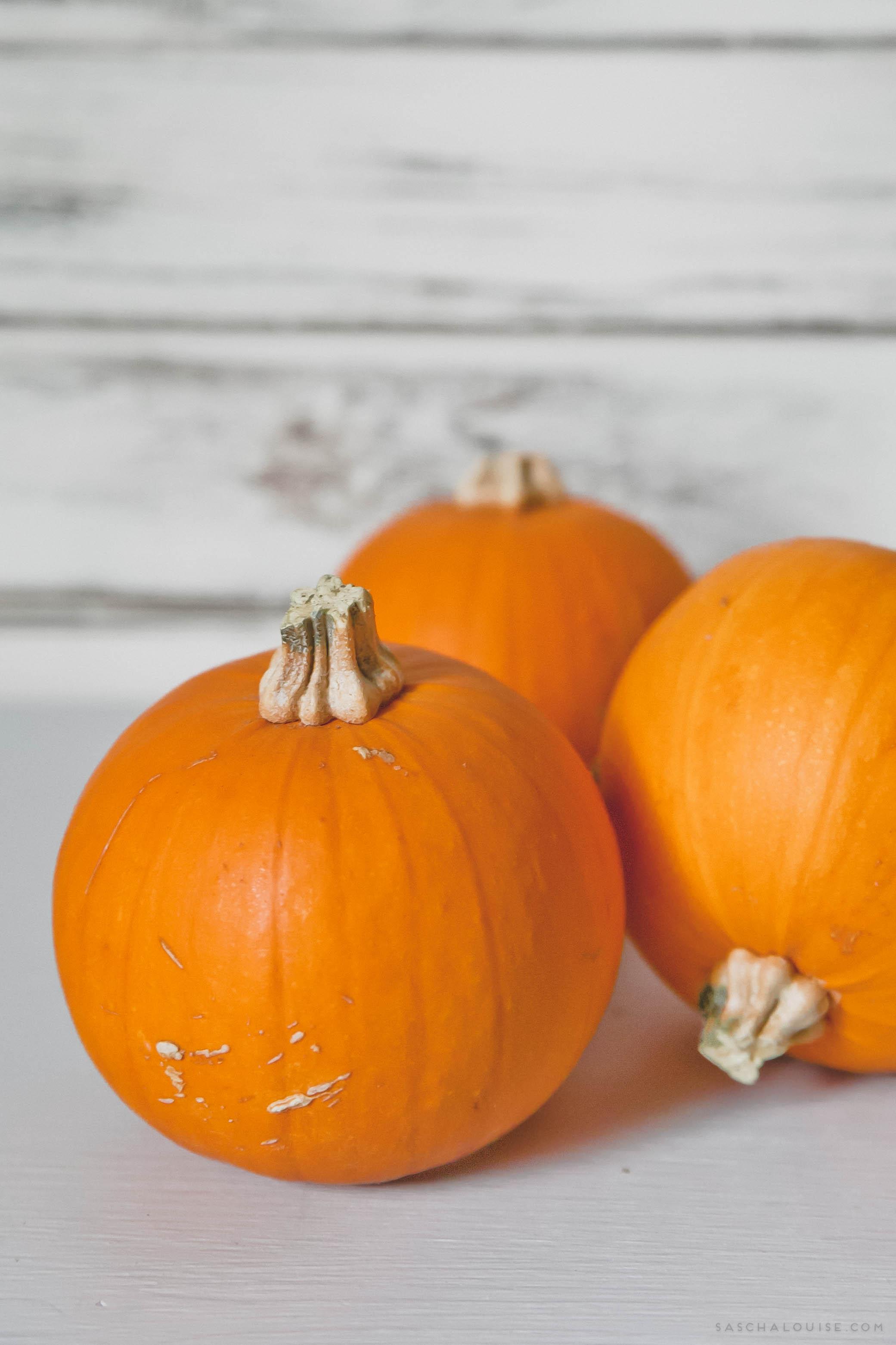 Baby Jack-O-Lantern Pumpkins
