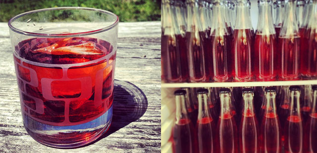 summerdranks.jpg