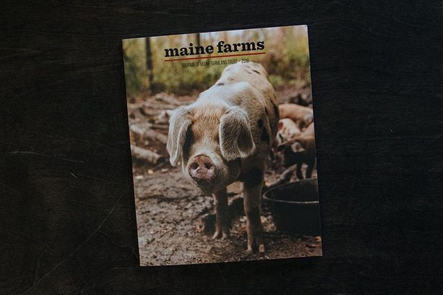 We're taking a look back at some of our favorite bits of last year's @mainefarms journal as we gear up for the 2019 edition.