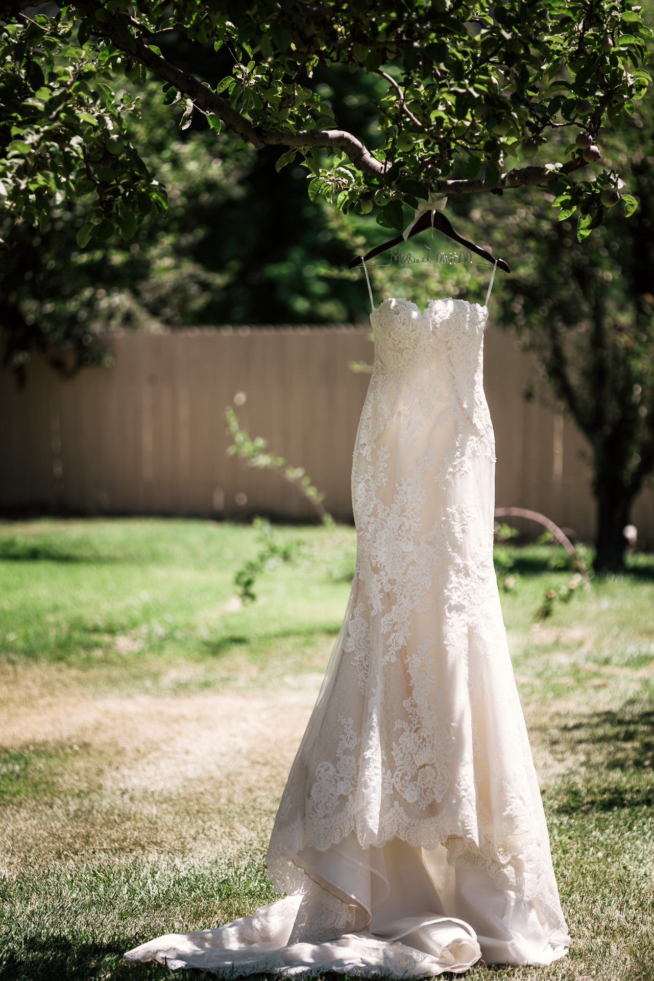 wedding dress hanging outdoors from tree at the secret garden located at the Historic Parish ranch in Oak Glen California