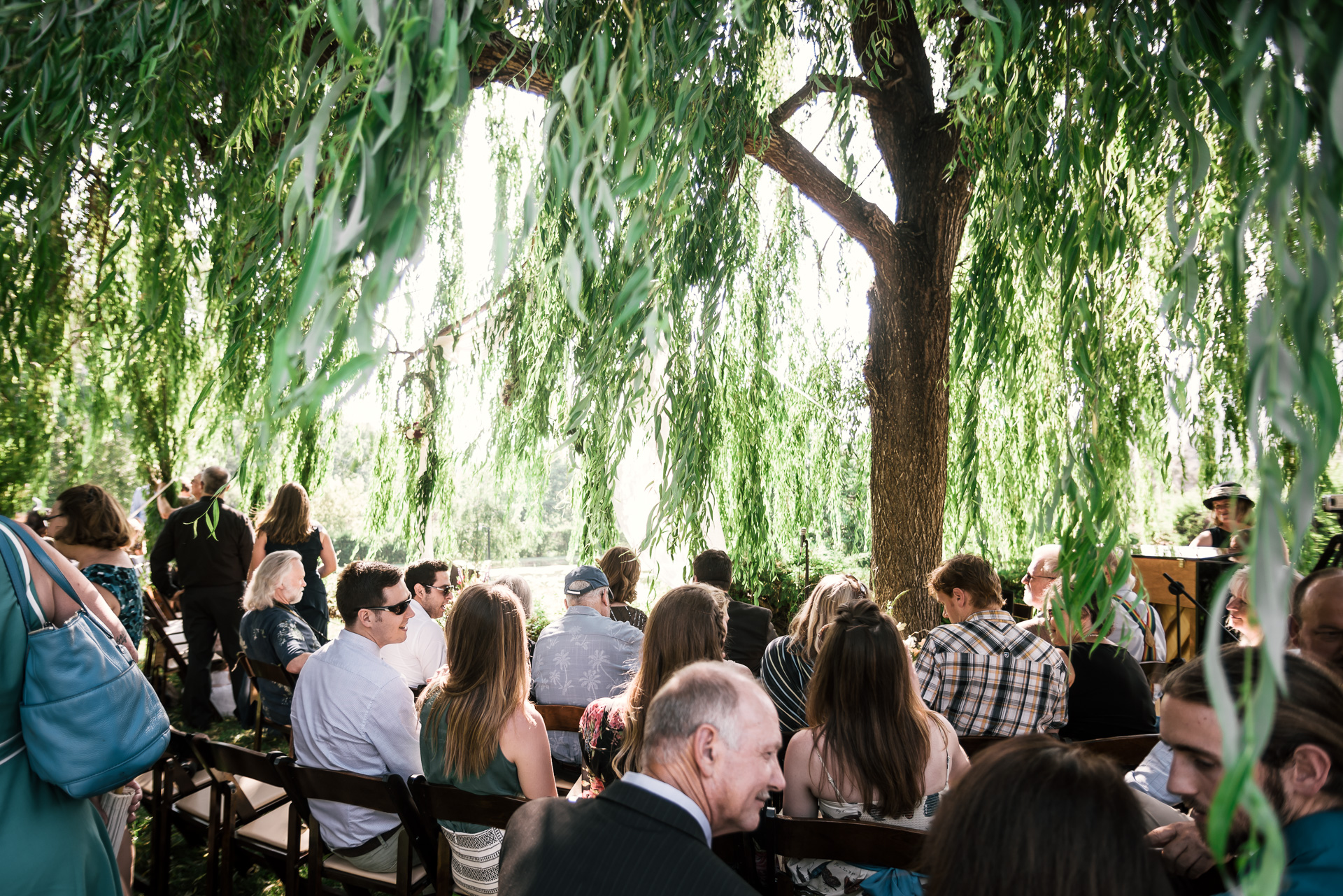 Wedding ceremony beneath the willow tree at the secret garden located at the Historic Parish ranch in Oak Glen California