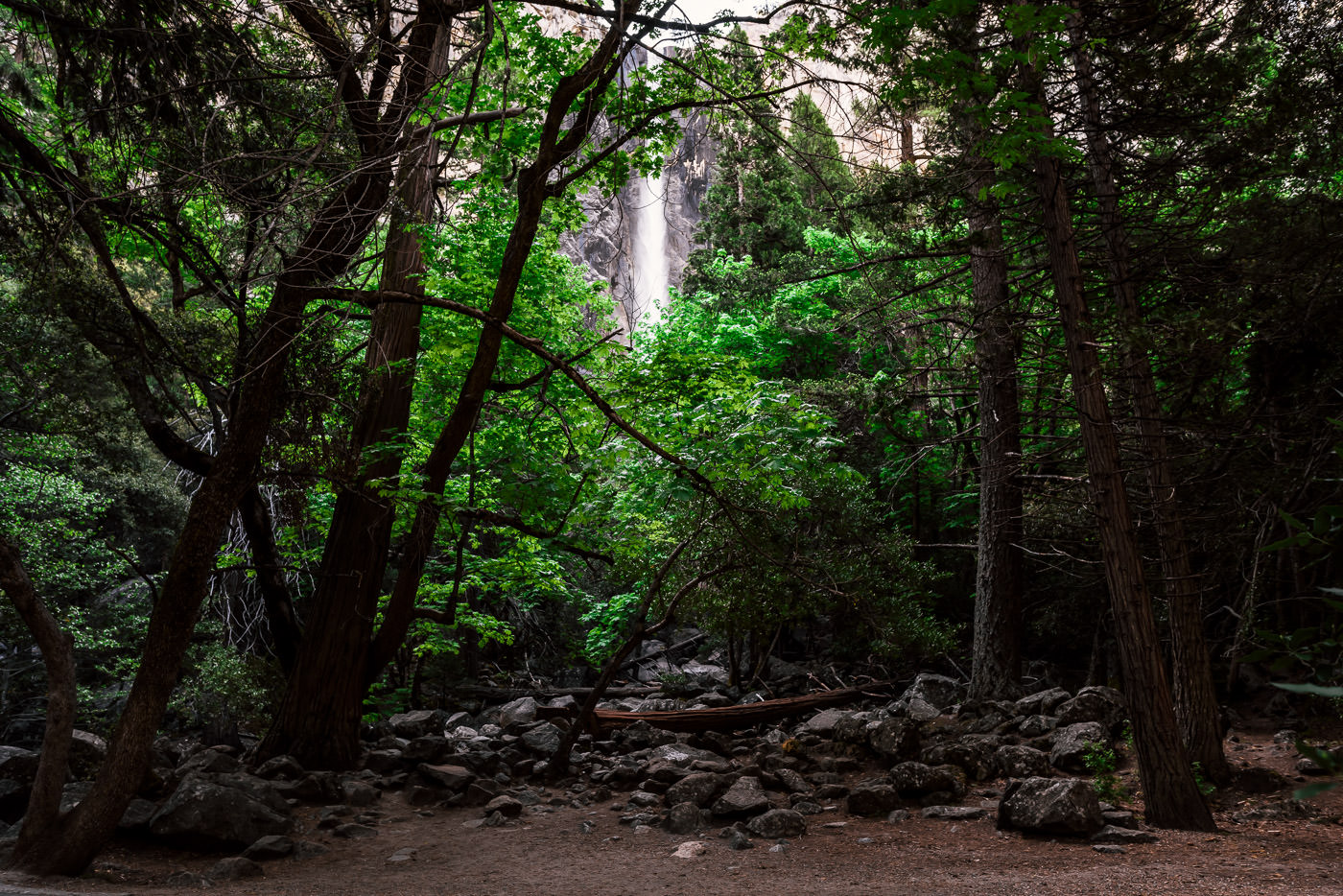 Yosemite elopement photographer captures the Bridalveil Falls wedding ceremony location early in the morning. The ceremony spot has limited room for guests.